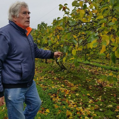 Sammy MacNeice in the orchards at Ardress where Mac Ivors Cider Co Irish Cider is made